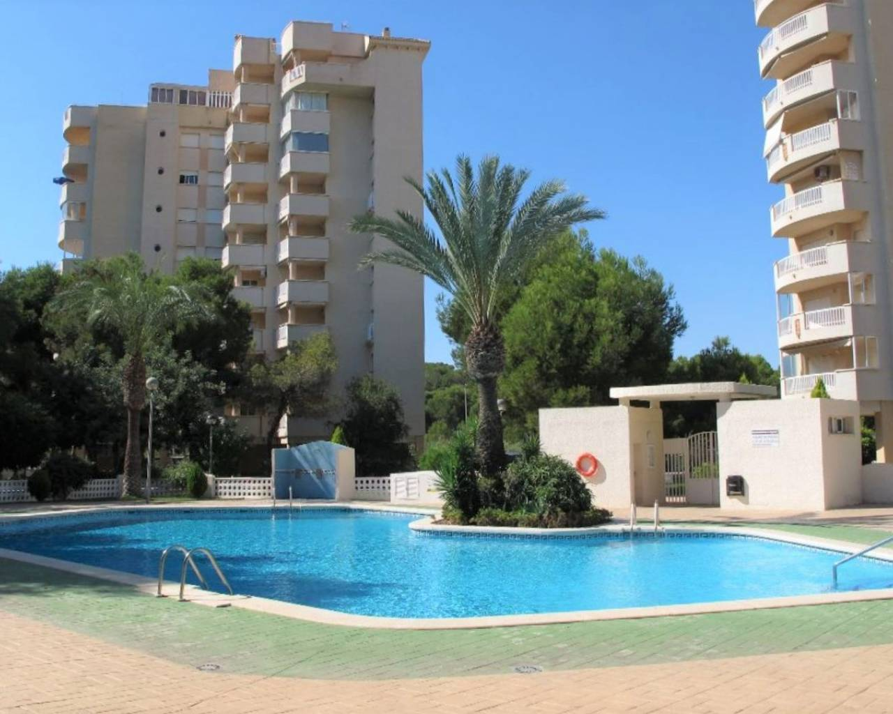 Apartment - Sale - Campoamor - Campoamor