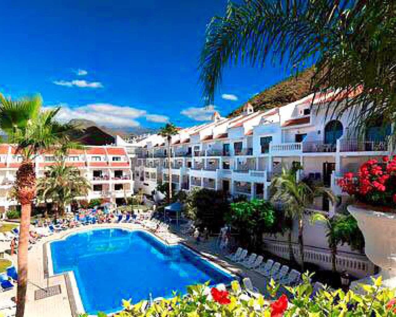 Apartment - Sale - Tenerife - Los Cristianos