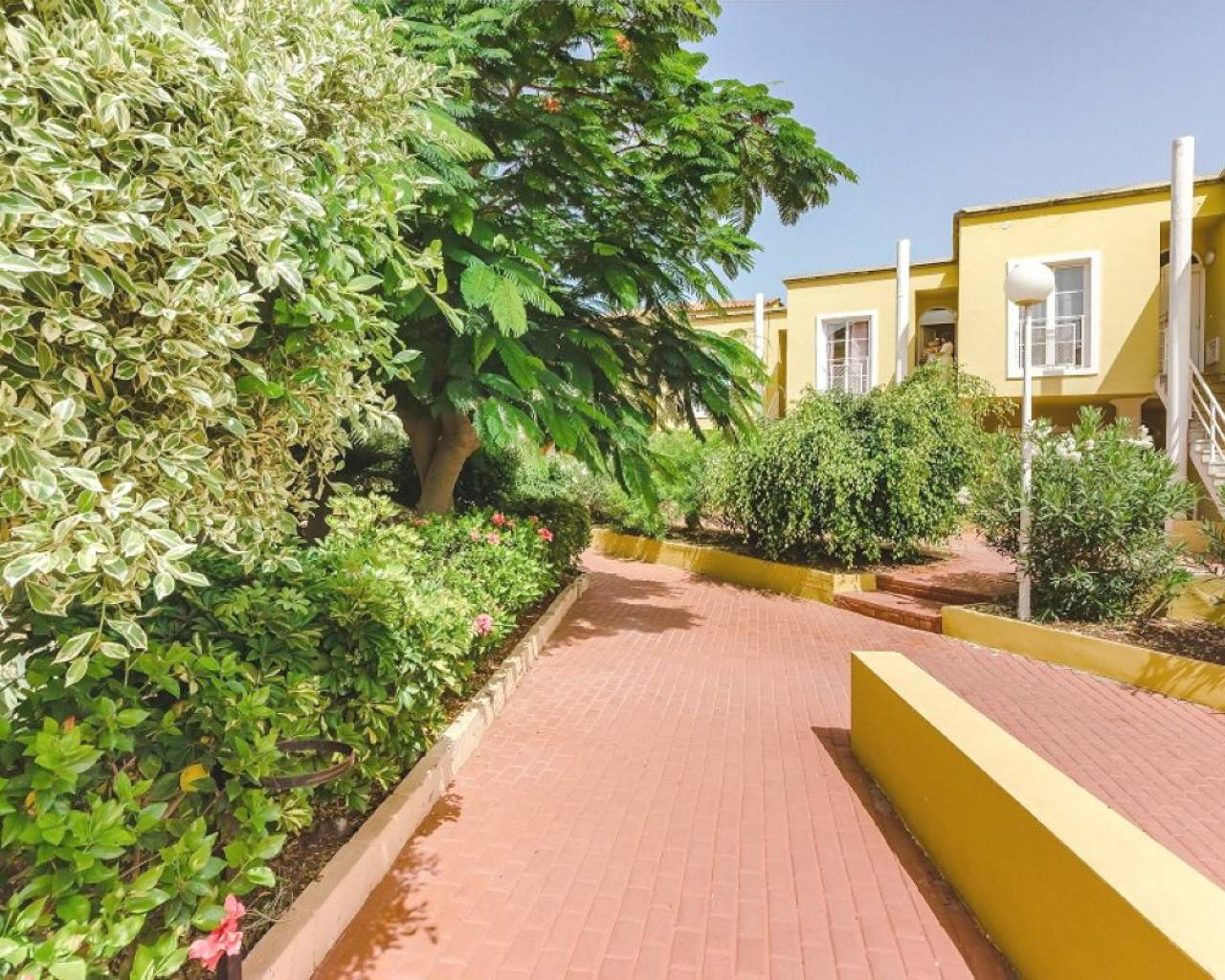 Apartment - Short term rental - Tenerife - Costa Adeje