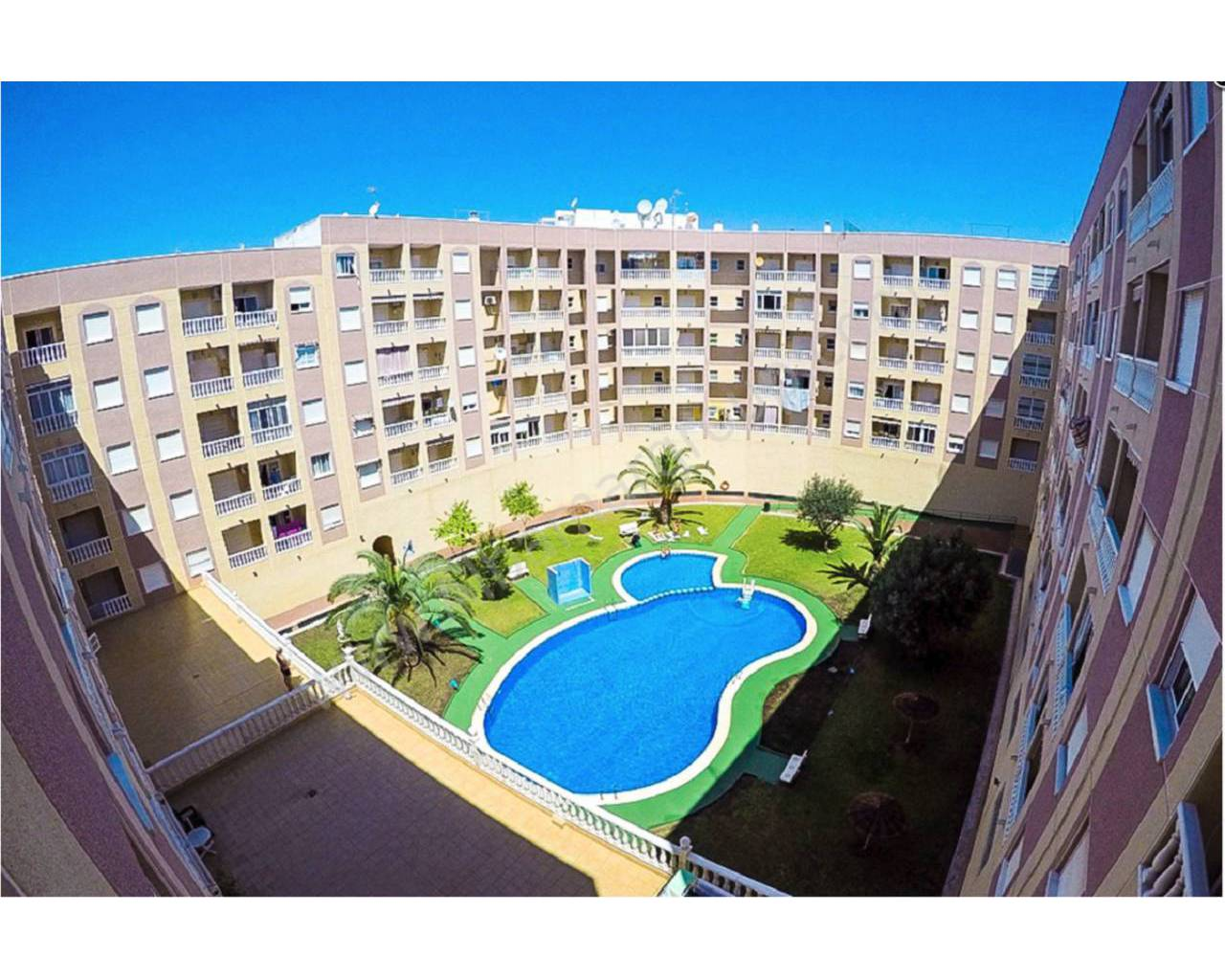 Apartment - Short term rental - Torrevieja - Torrevieja