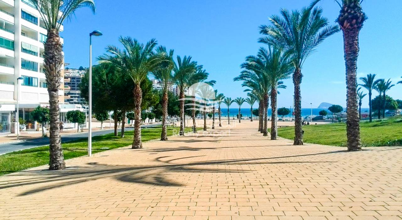 Short term rental - Apartment - Villajoyosa - La Cala de Villajoyosa